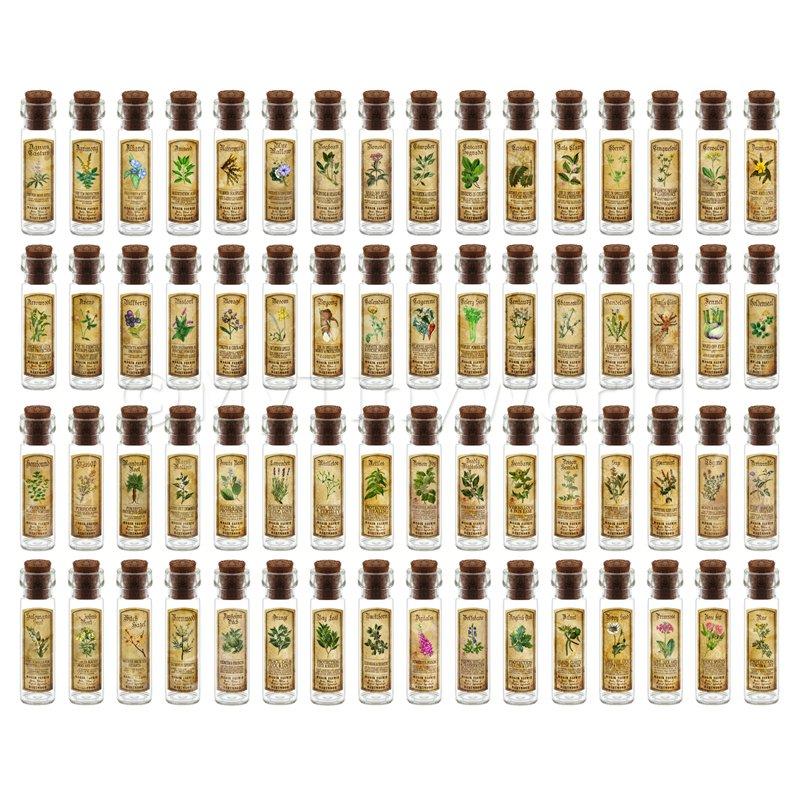 bambolas House FARMACIA Set di 64 erbe lungo  Coloreeee etichetta e bottiglie  prima qualità ai consumatori
