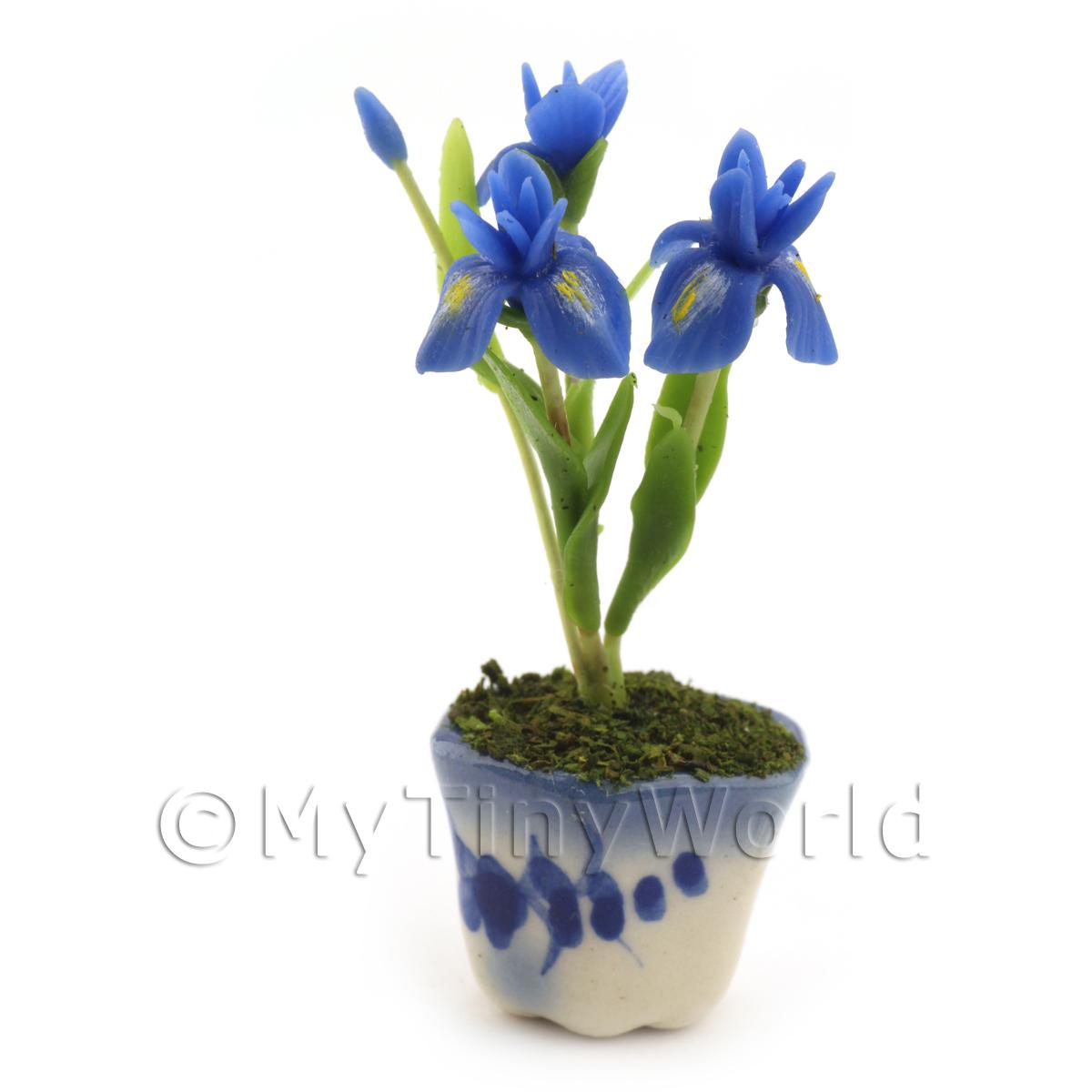 Dolls House Miniature Blue Iris