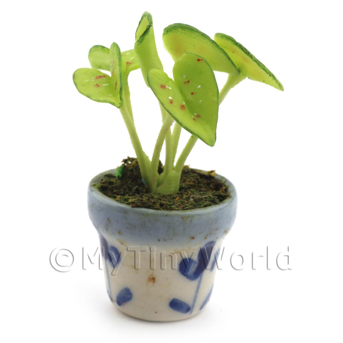 Dolls House Miniature Venus Fly Trap