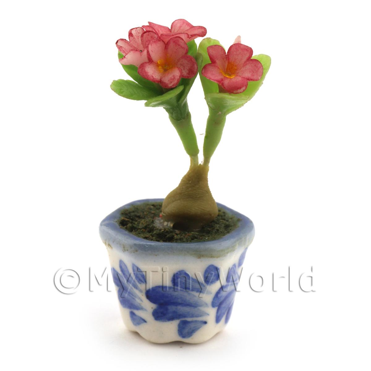 Dolls House Miniature Red Plumeria