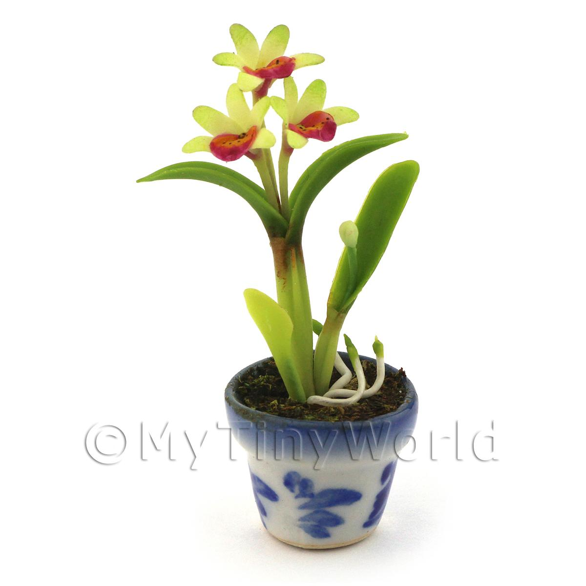 Dolls House Miniature Green Soph Orchid