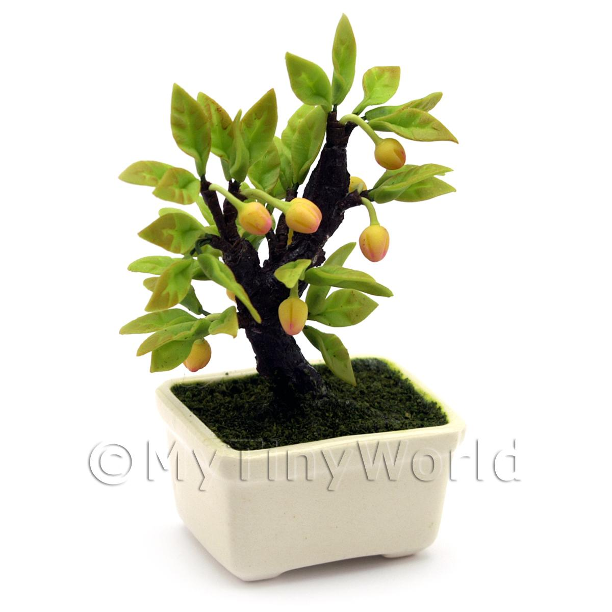 Dolls House Miniature Hand Made Fruiting Bonsai Tree
