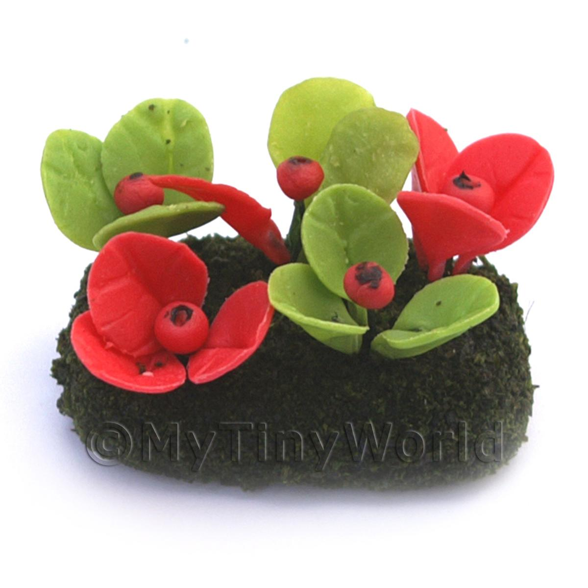 Dolls House Miniature Small DIY Flower Bed (DIY15)