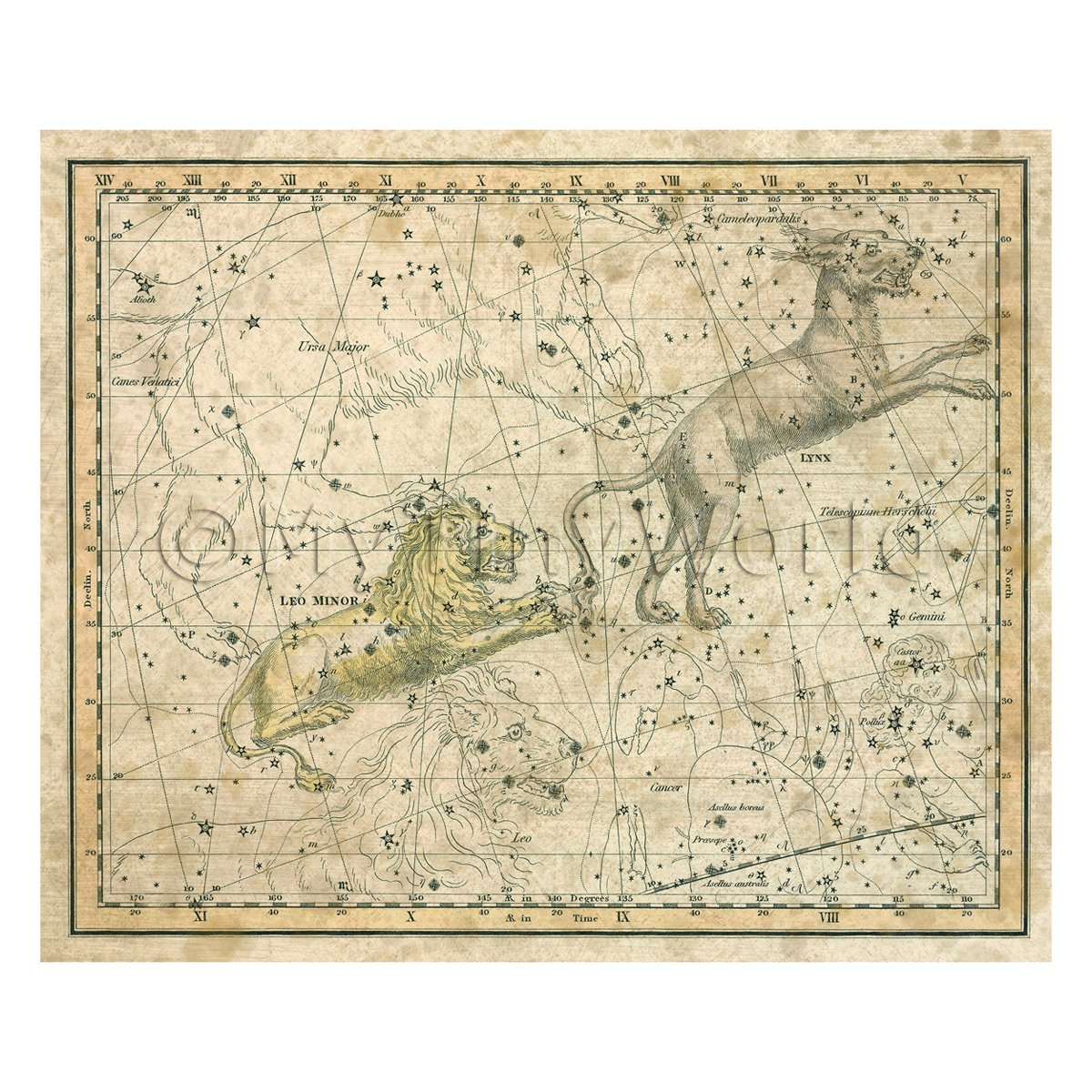 Dolls House Miniature Aged1800s Star Map With Leo Minor And Lynx
