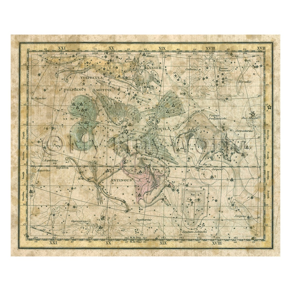 Dolls House Miniature Aged 1800s Star Map With Aquila, Delphinus And Antinous