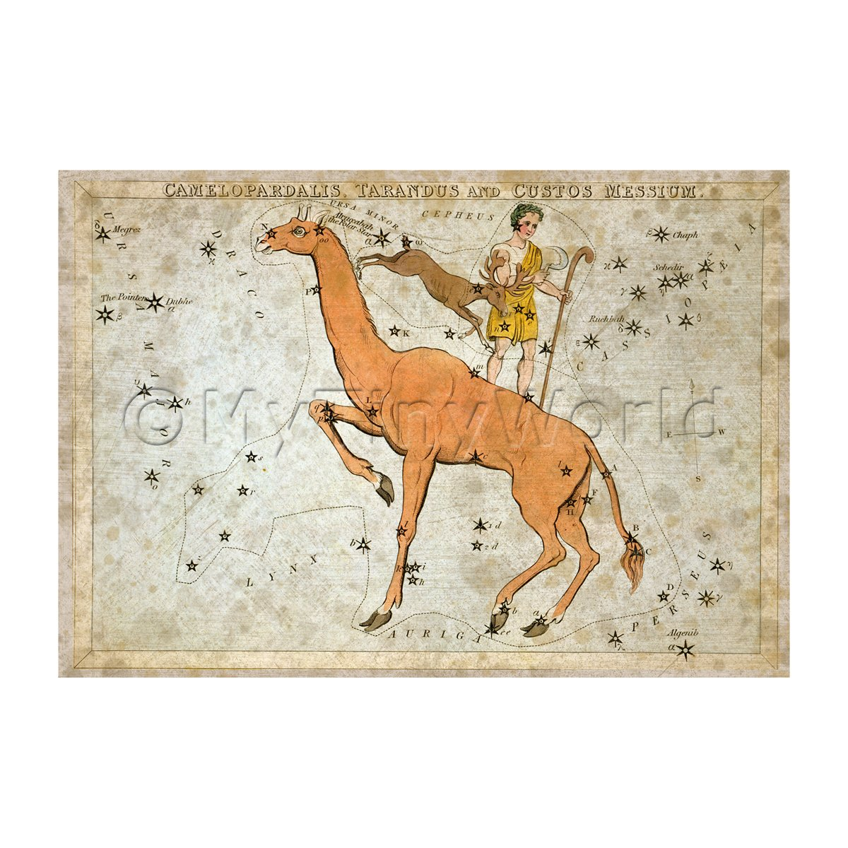 Dolls House Miniature Aged 1820s Star Map Depicting Camelopardalis