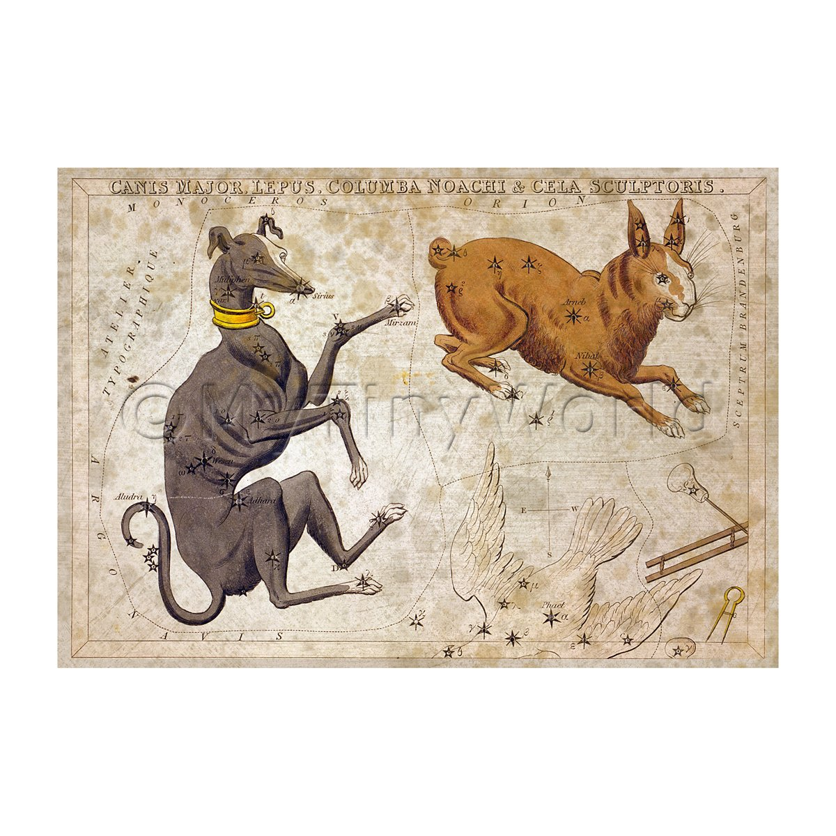 Dolls House Miniature Aged 1820s Star Map Depicting Canis Major, Lepus