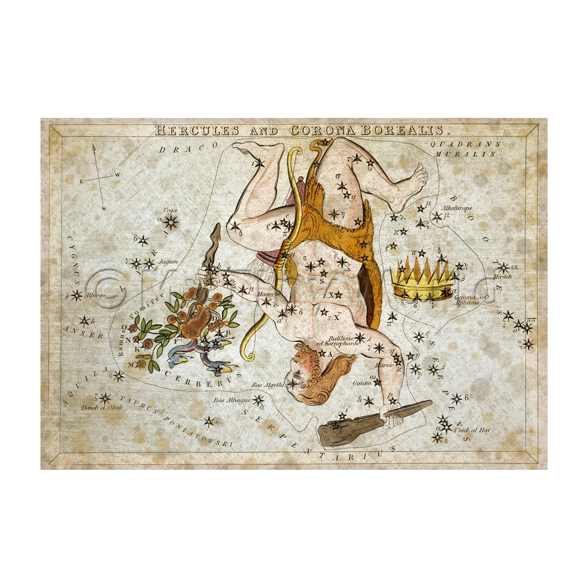 Dolls House Miniature Aged 1820s Star Map Depicting Hercules