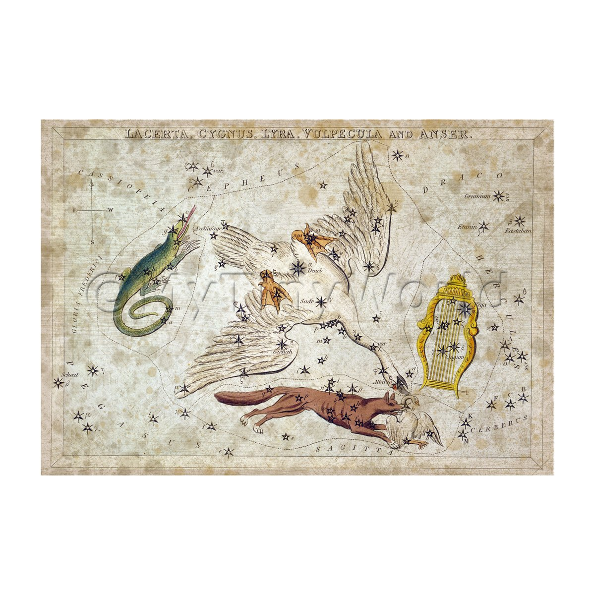 Dolls House Miniature Aged 1820s Star Map Depicting Lacerta, Cygnus