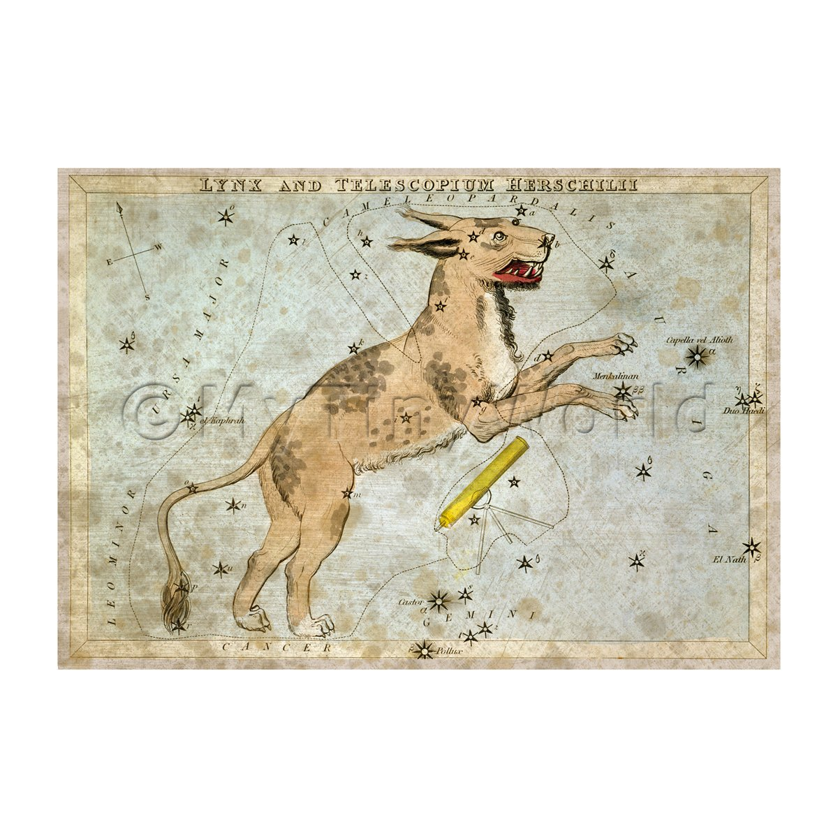 Dolls House Miniature Aged 1820s Star Map Depicting Lynx