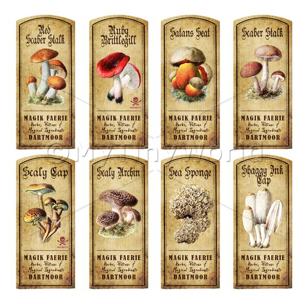 Dolls House Apothecary 8 Fungus / Mushroom Colour Labels Set 5
