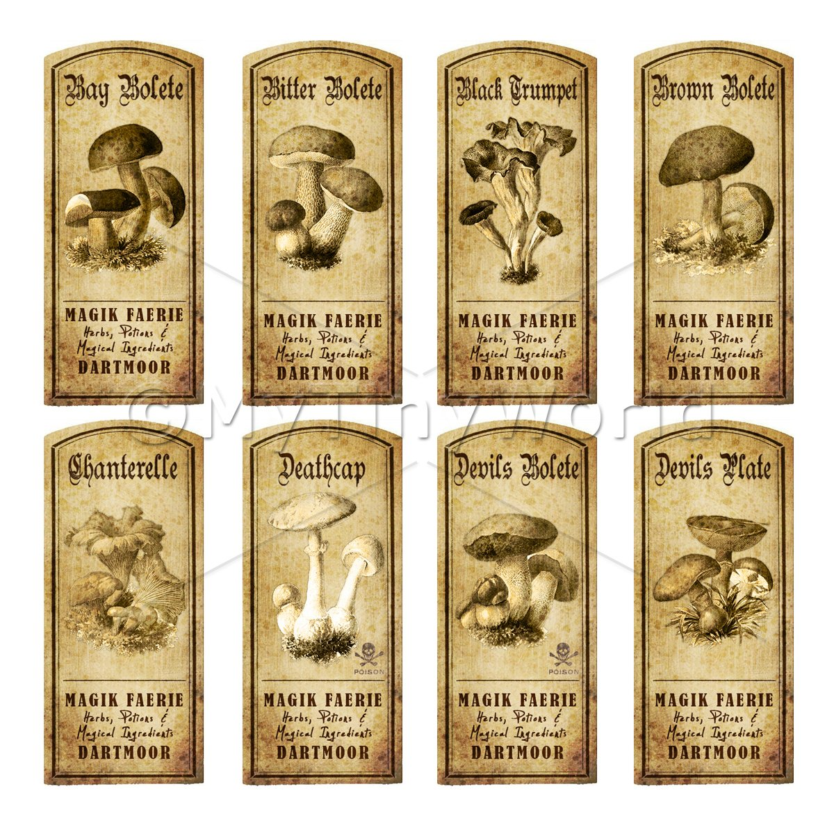 Dolls House Miniature Apothecary 8 Fungus / Mushroom Labels Set 1