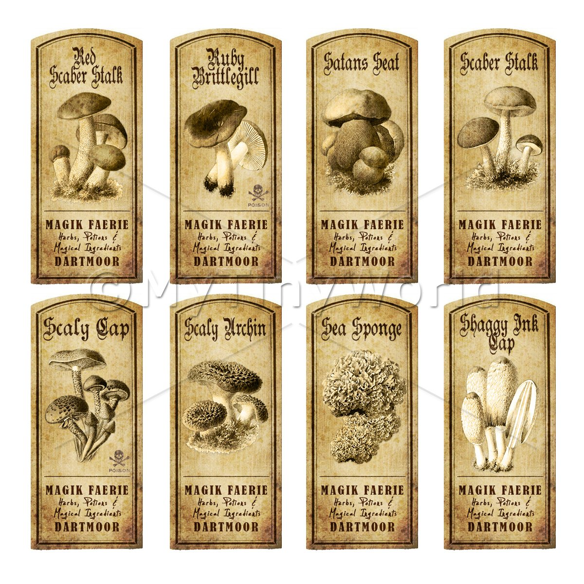 Dolls House Miniature Apothecary 8 Fungus / Mushroom Labels Set 5