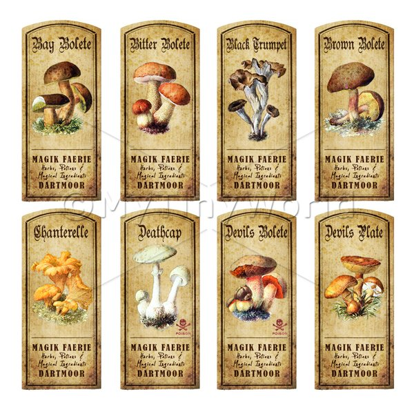 Dolls House Apothecary 8 Fungus / Mushroom Colour Labels Set 1