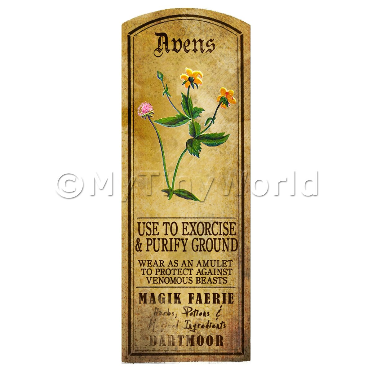 Dolls House Herbalist/Apothecary Avens Herb Long Colour Label