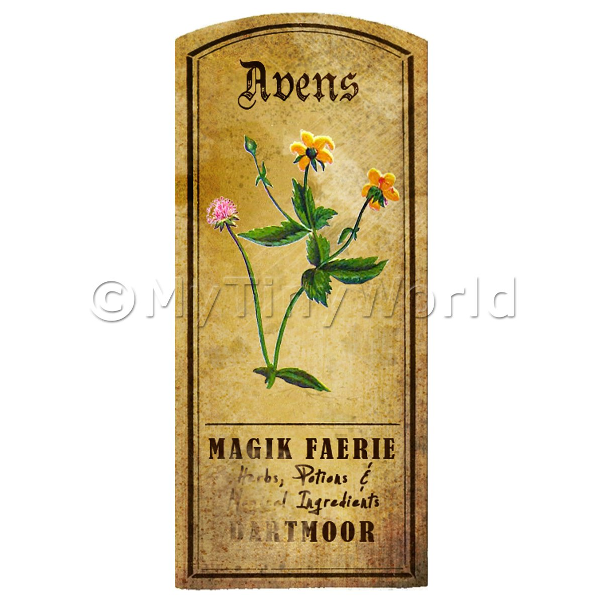 Dolls House Herbalist/Apothecary Avens Herb Short Colour Label