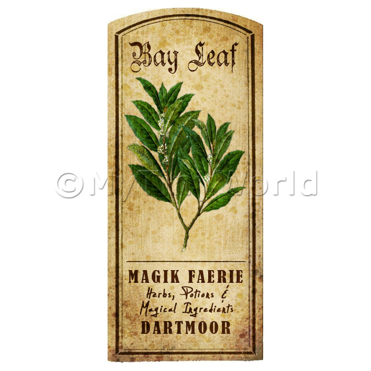 Dolls House Herbalist/Apothecary Bay Leaf Herb Short Colour Label