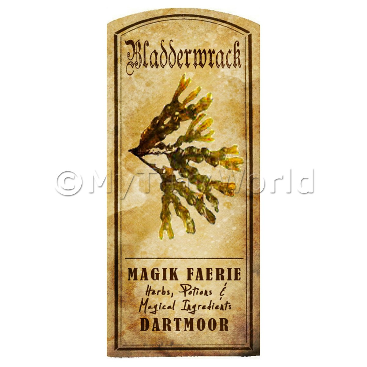 Dolls House Herbalist/Apothecary Bladderwrack Herb Short Colour Label