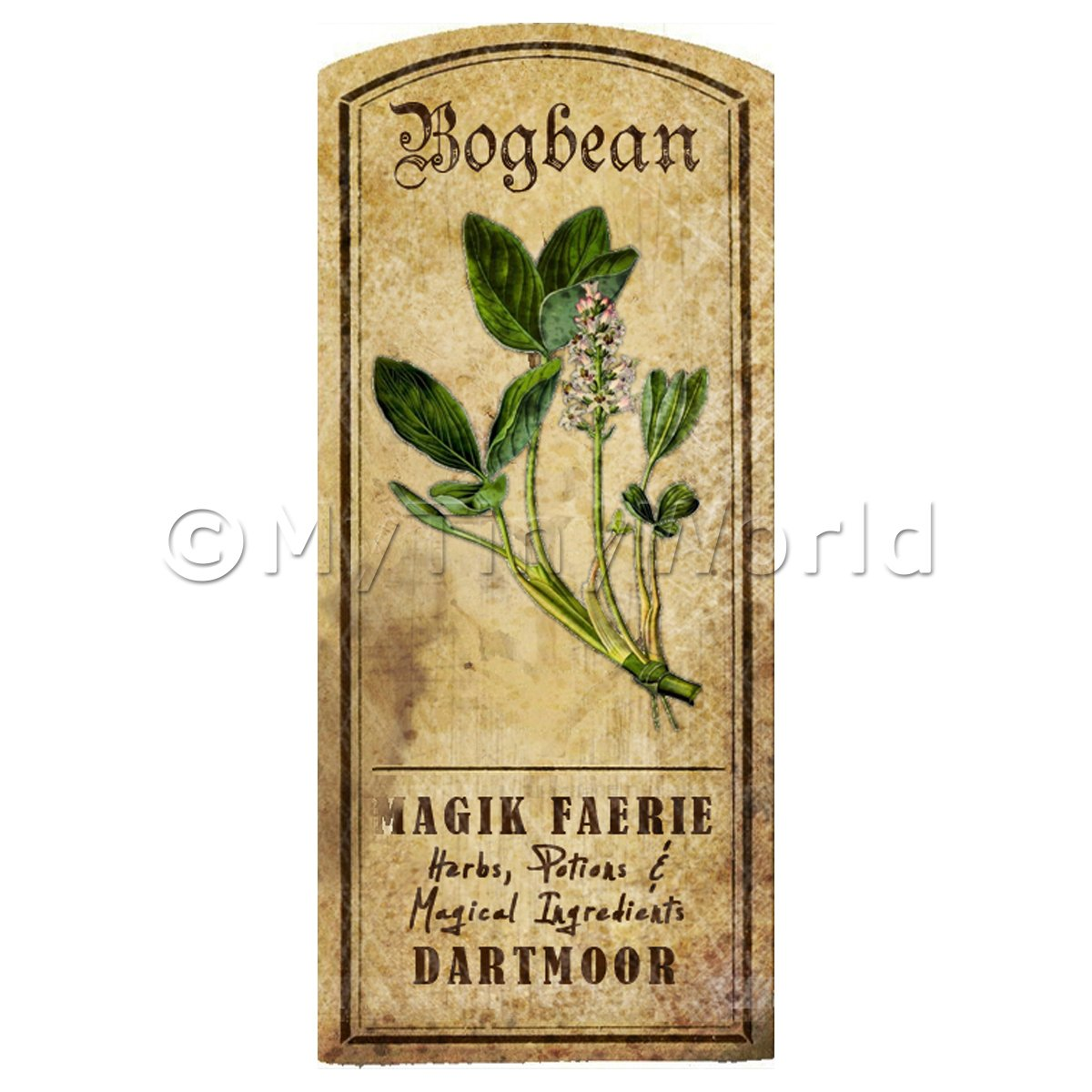 Dolls House Herbalist/Apothecary Bogbean Herb Short Colour Label