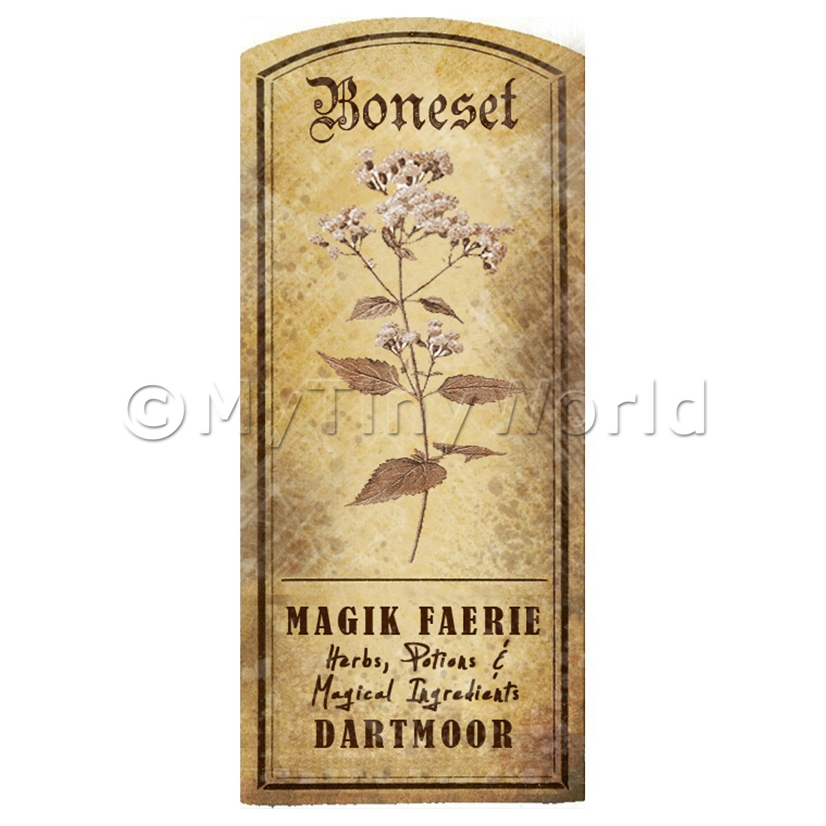 Dolls House Herbalist/Apothecary Boneset Herb Short Sepia Label