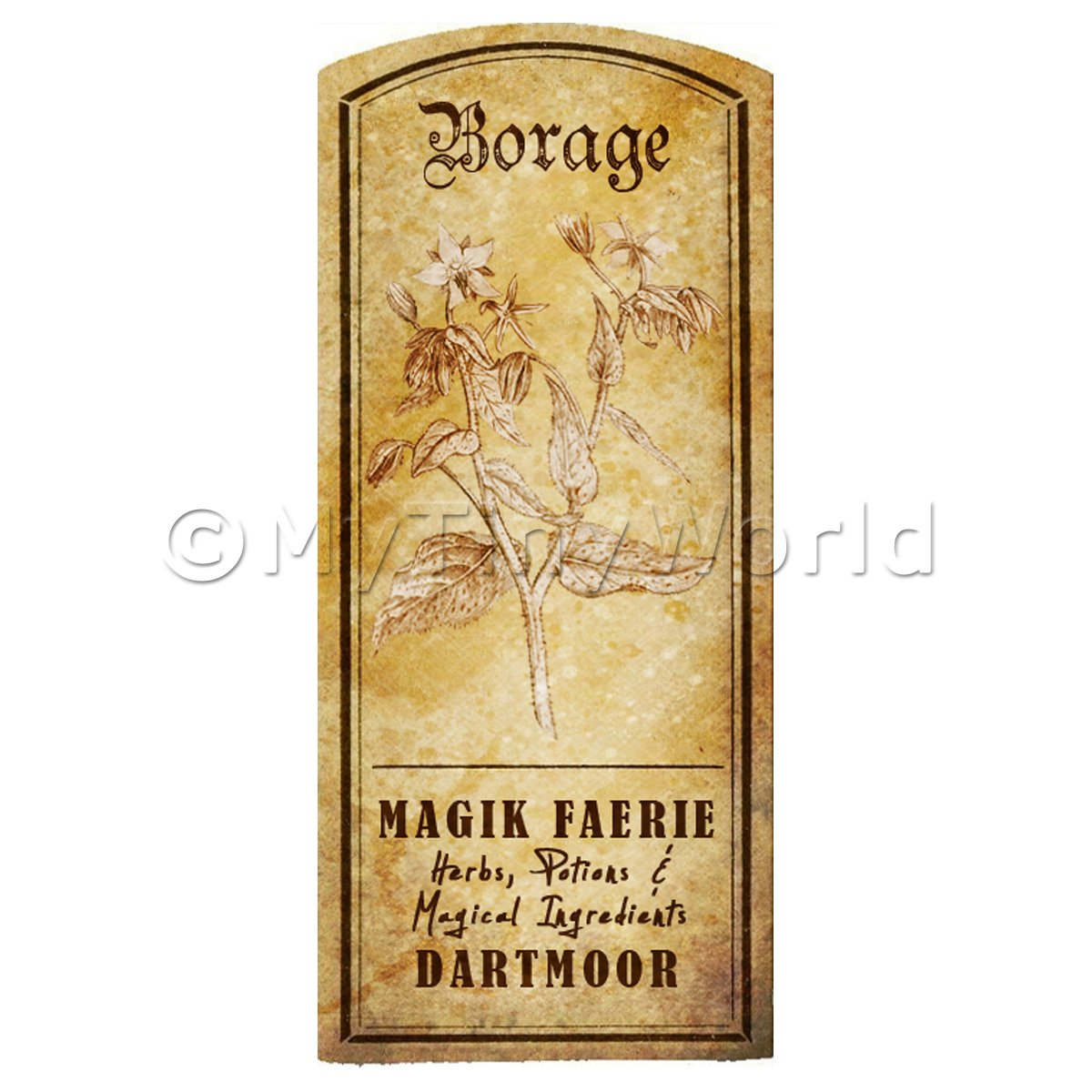 Dolls House Herbalist/Apothecary Borage Herb Short Sepia Label