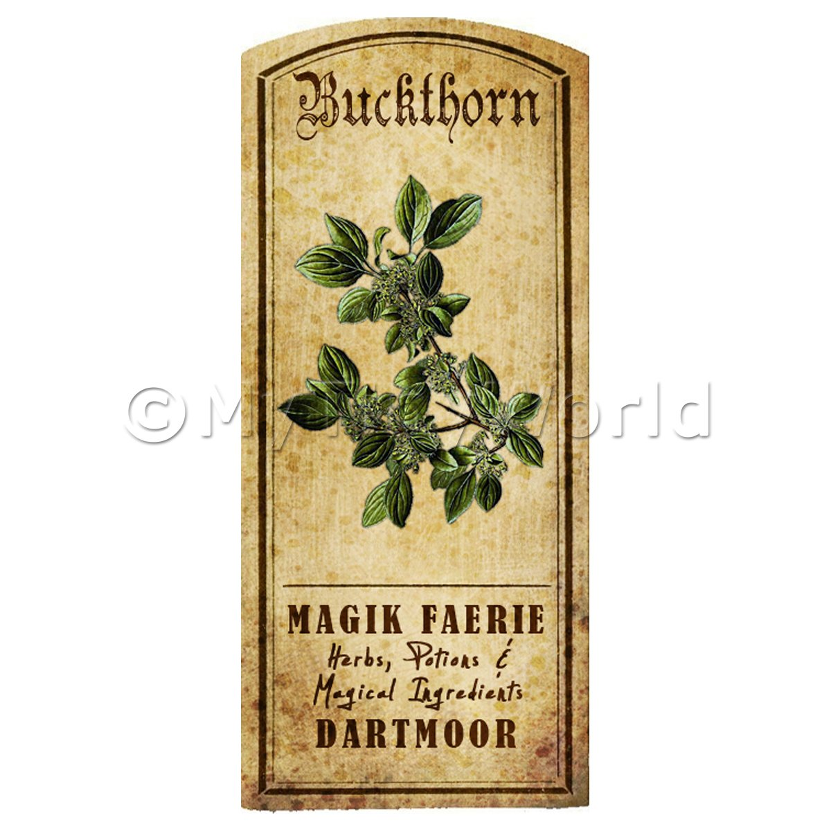 Dolls House Herbalist/Apothecary Buckthorn Herb Short Colour Label