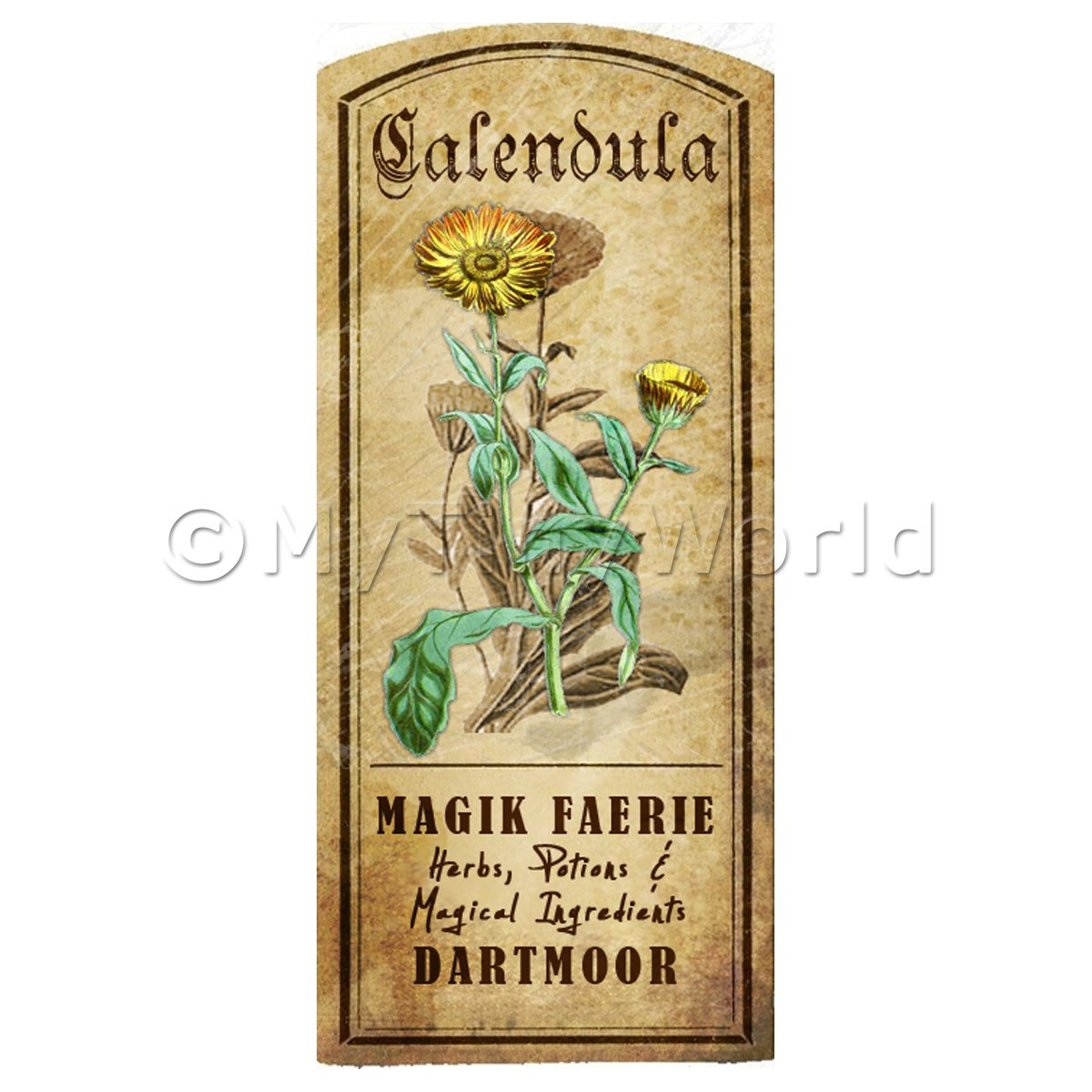 Dolls House Herbalist/Apothecary Calendula Herb Short Colour Label