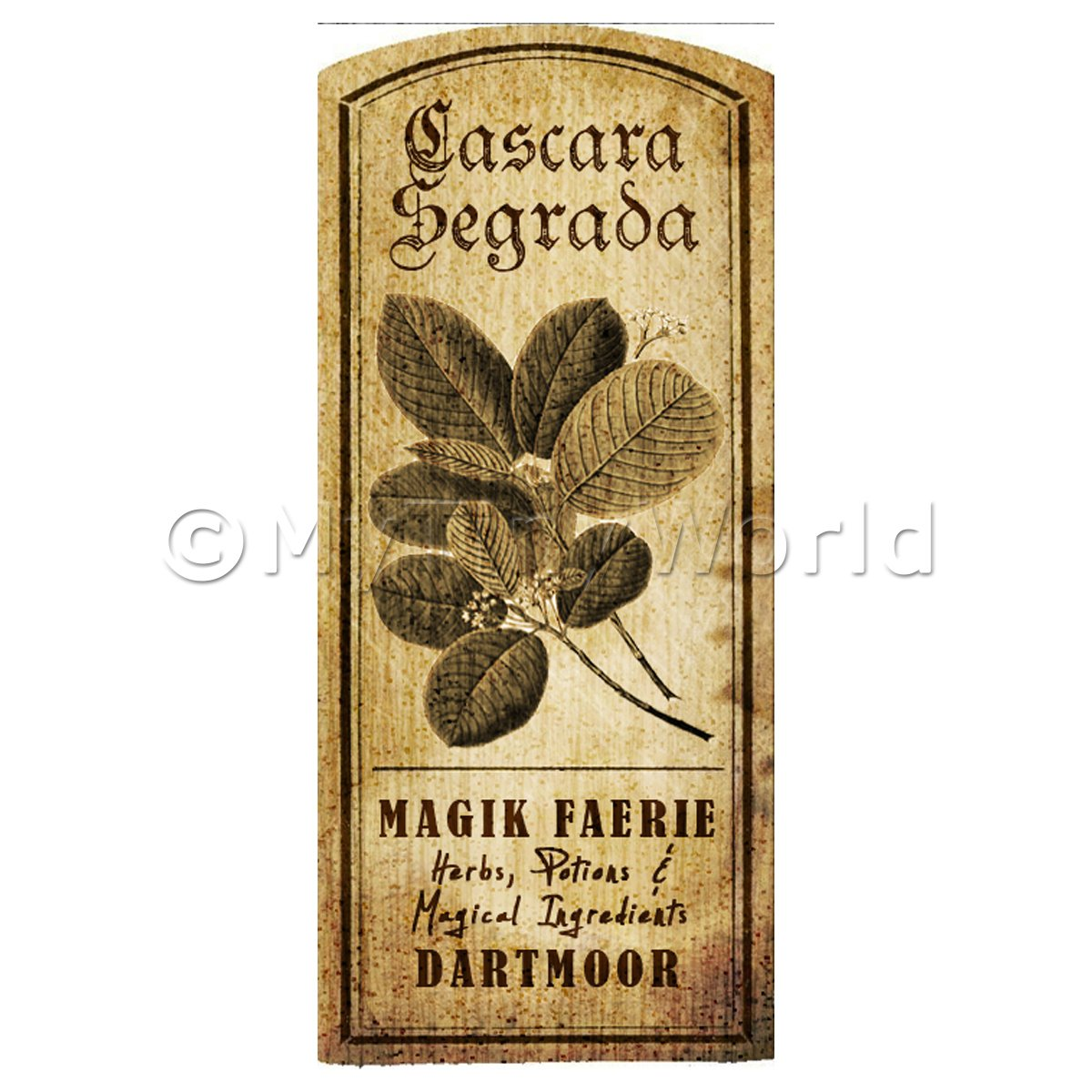 Dolls House Herbalist/Apothecary Cascara Segrada Herb Short Sepia Label