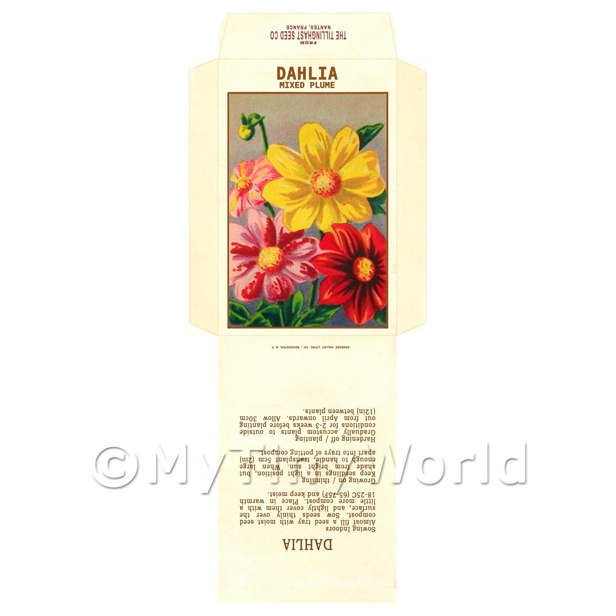 Mixed Dahlia Dolls House Miniature Seed Packet