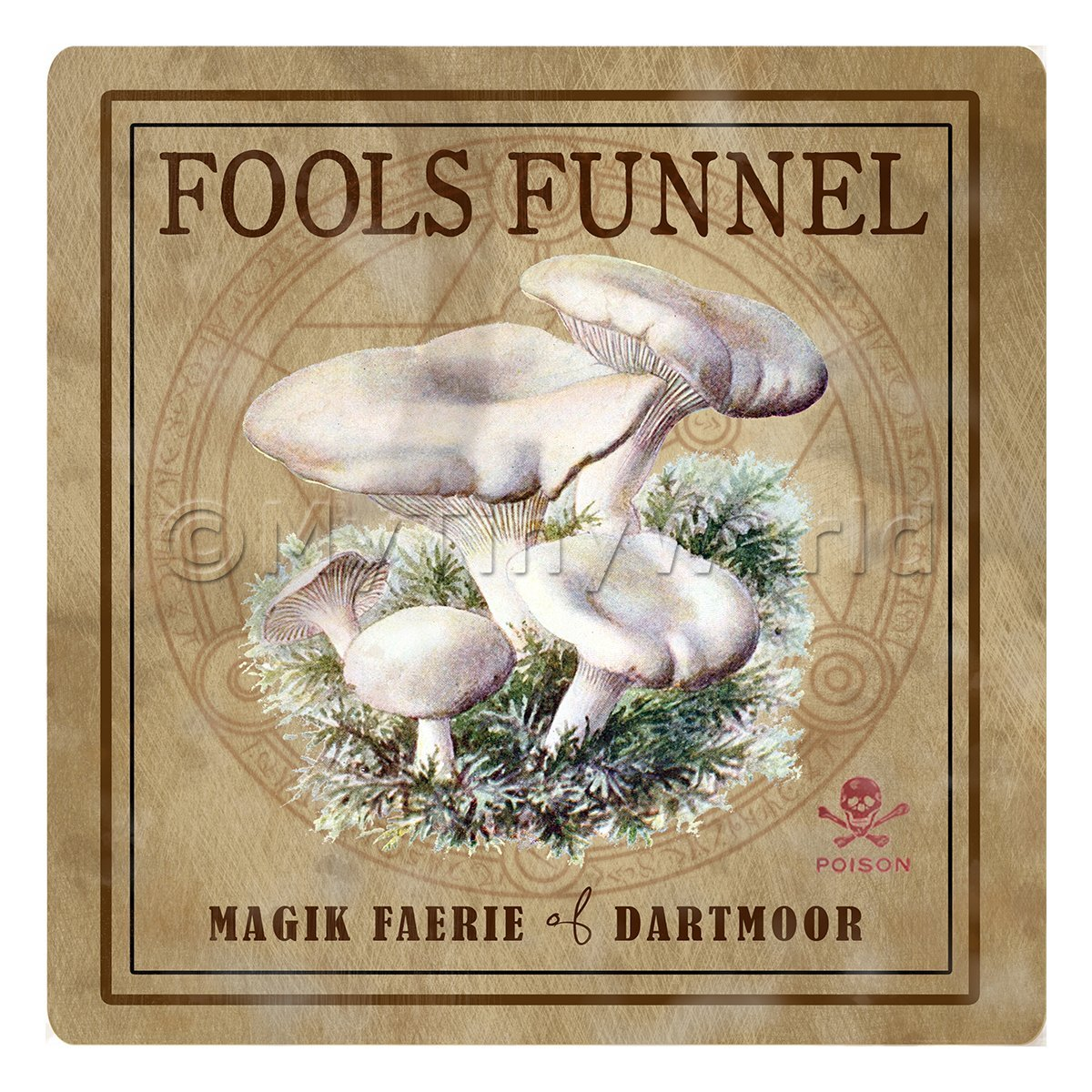 Dolls House Miniature Apothecary Fools Funnel Fungi Colour Box Label