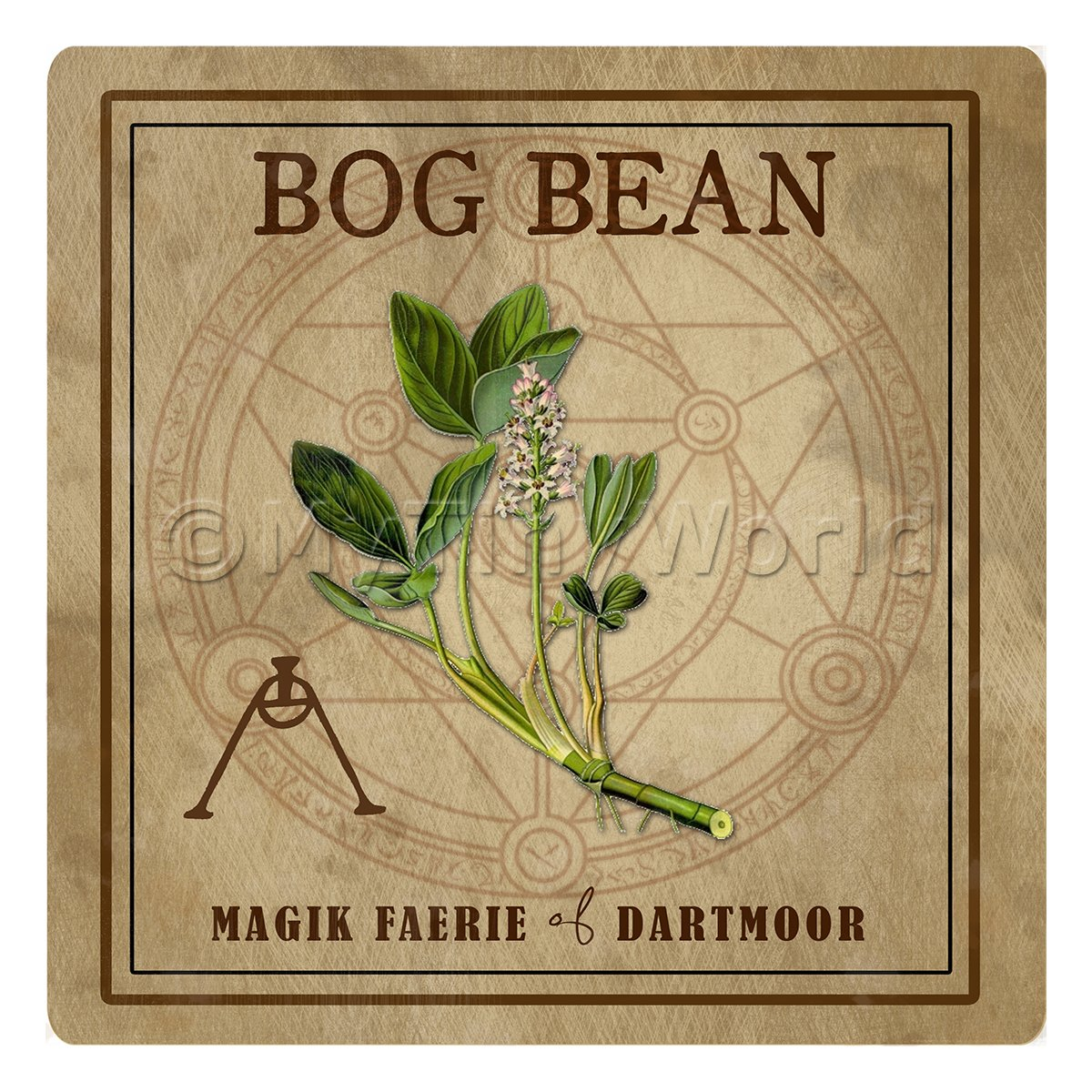 Dolls House Herbalist/Apothecary Square Bogbean Herb Label