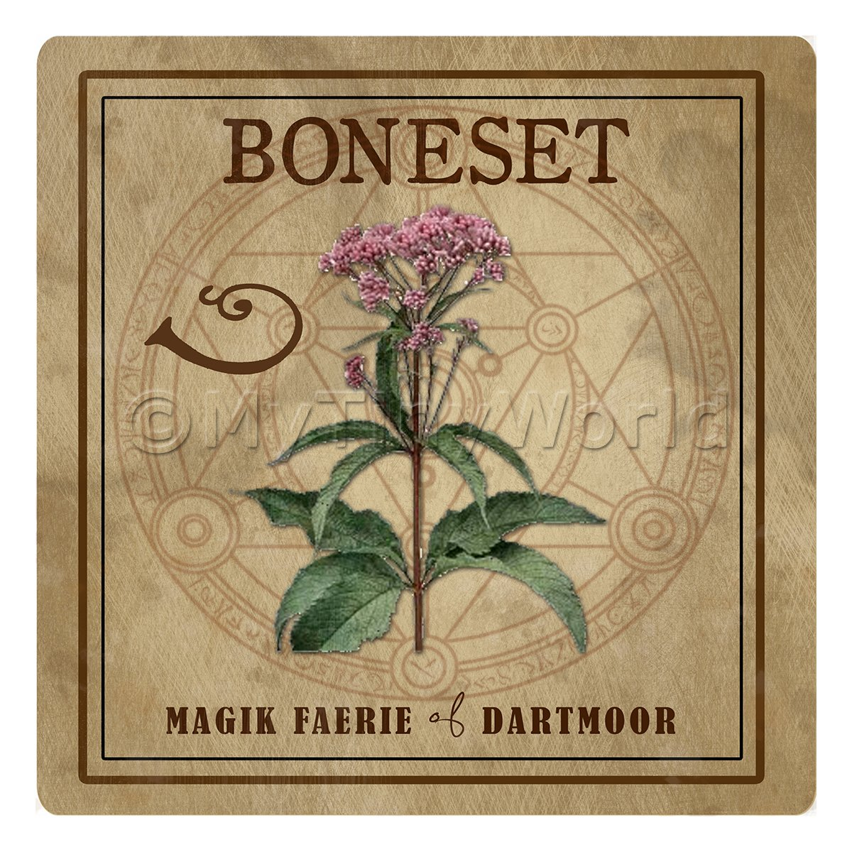 Dolls House Herbalist/Apothecary Square Boneset Herb Label