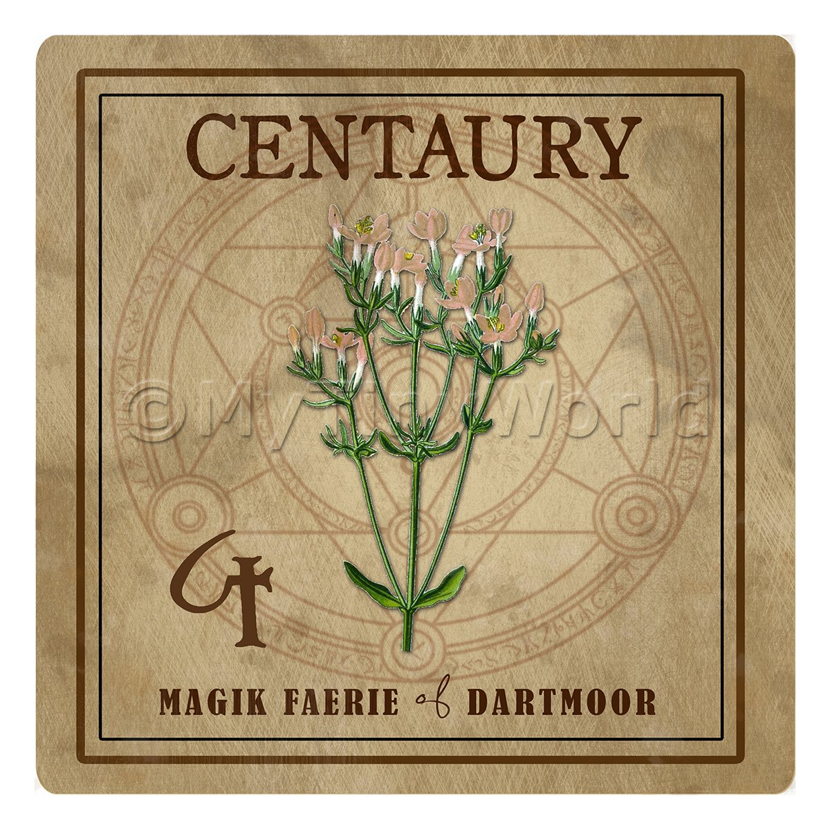 Dolls House Herbalist/Apothecary Square Centuary Herb Label