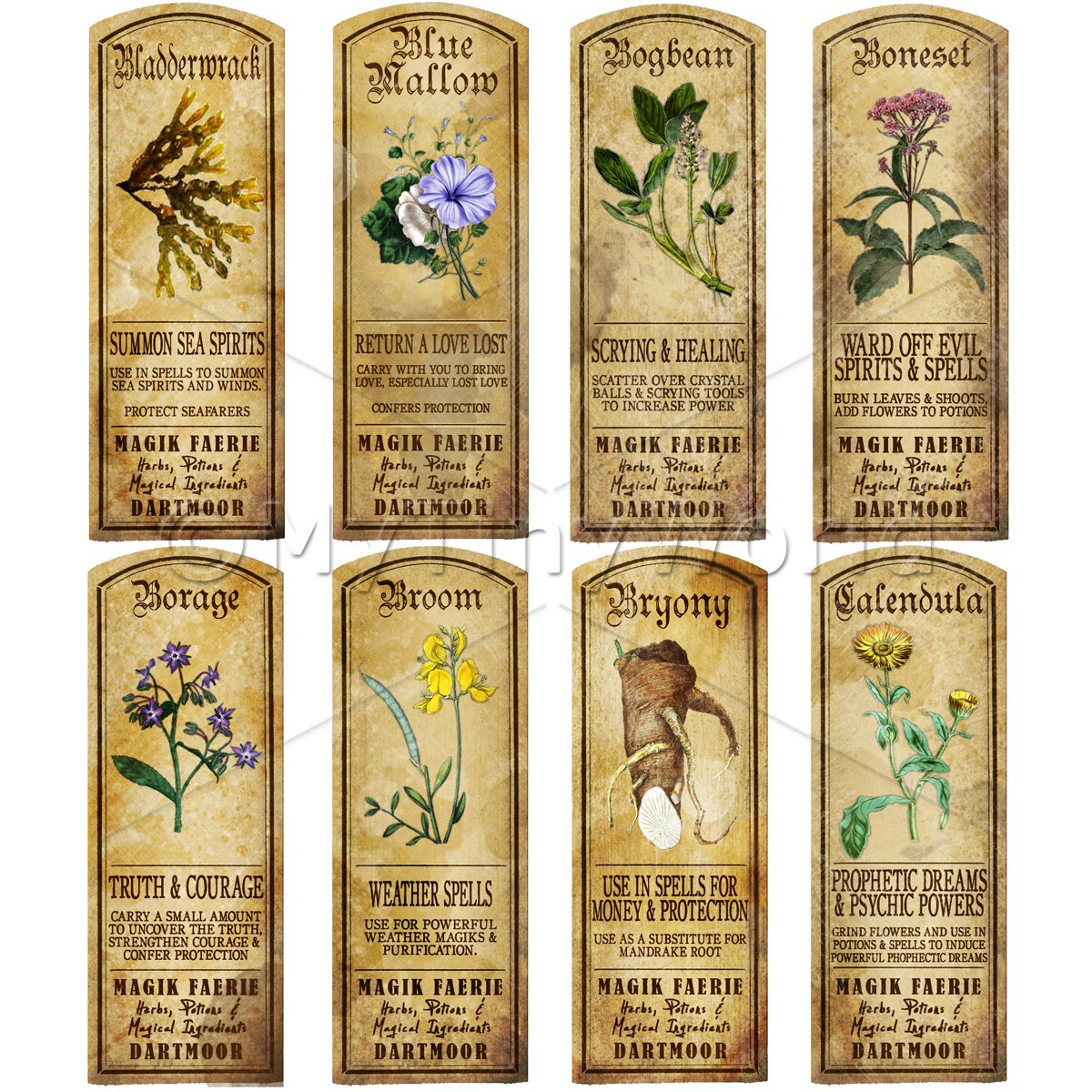 Dolls House Herbalist/Apothecary Long Herb Colour Label Set 2