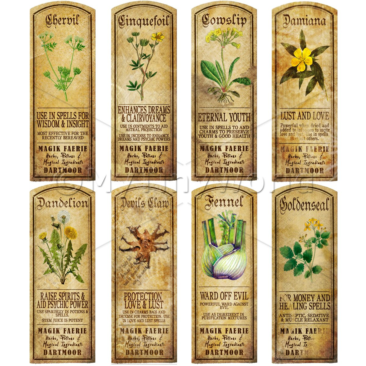 Dolls House Herbalist/Apothecary Long Herb Colour Label Set 4