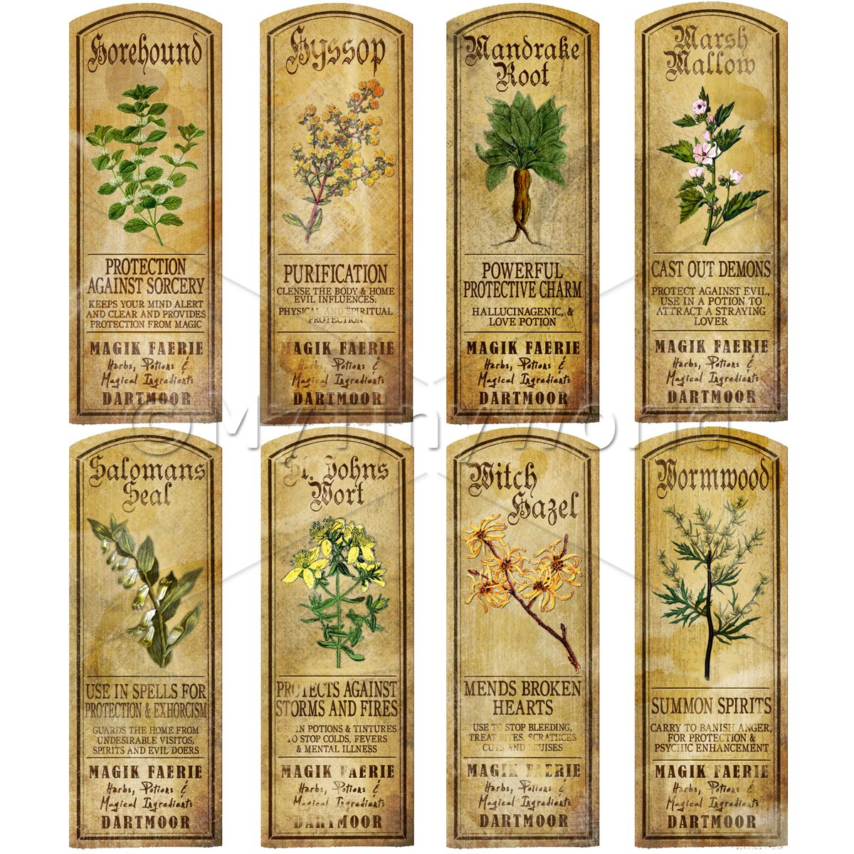 Dolls House Herbalist/Apothecary Long Herb Colour Label Set 5