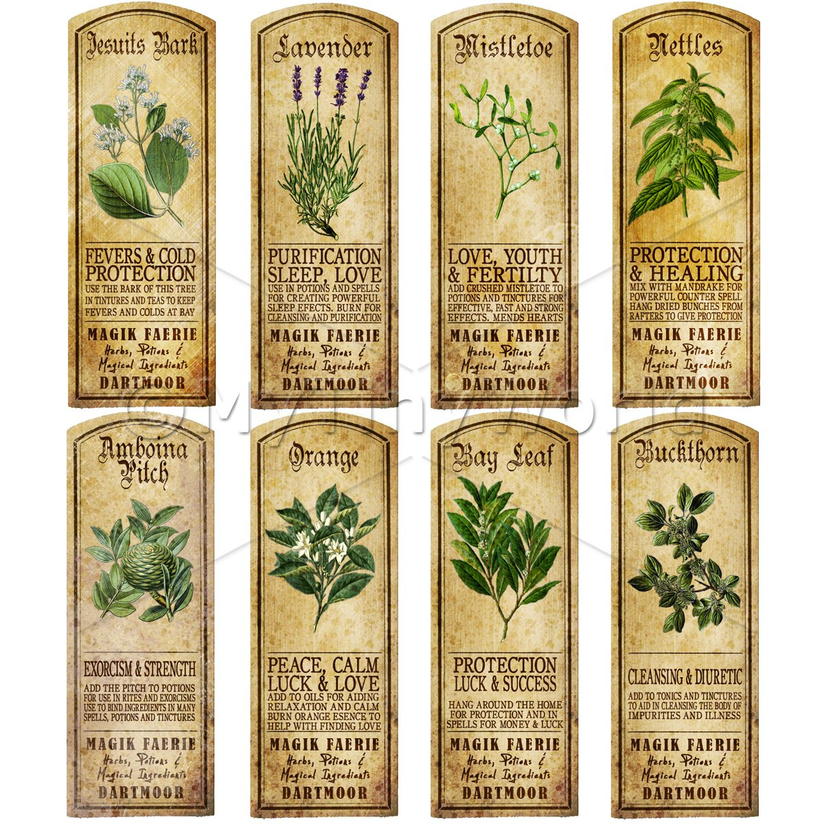 Dolls House Herbalist/Apothecary Long Herb Colour Label Set 6