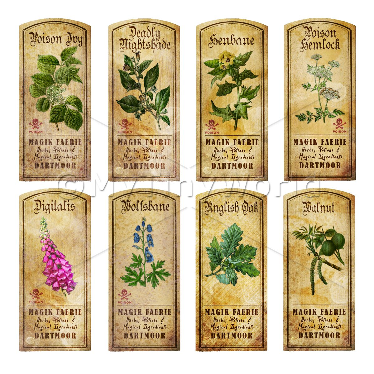 Dolls House Herbalist/Apothecary Short Herb Colour Label Set 7