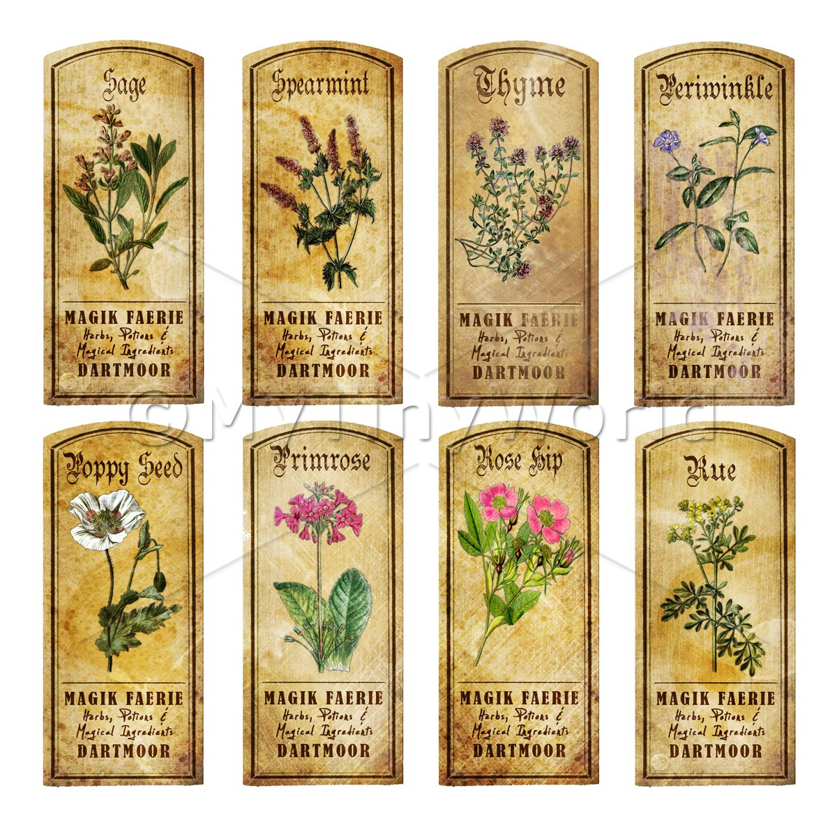 Dolls House Herbalist/Apothecary Short Herb Colour Label Set 8