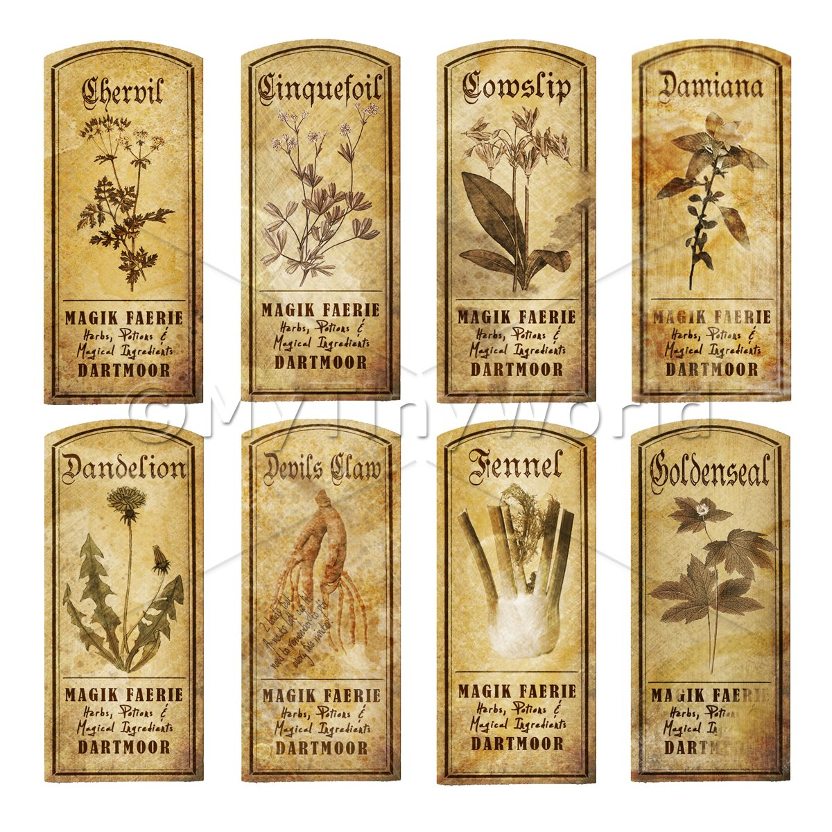 Dolls House Herbalist/Apothecary Short Herb Sepia Label Set 4