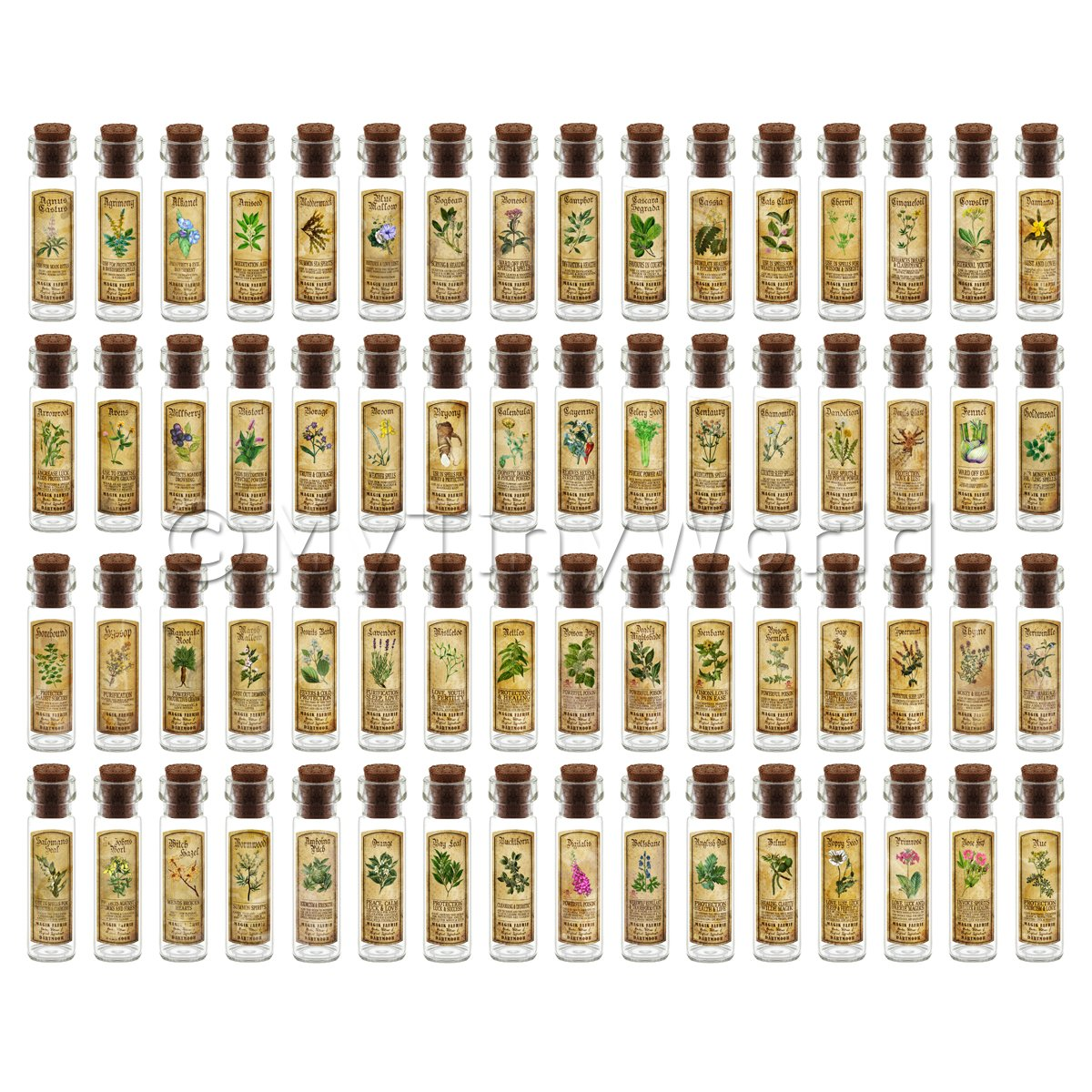 Dolls House Apothecary Set Of 64 Herb Long Colour Label And Bottles