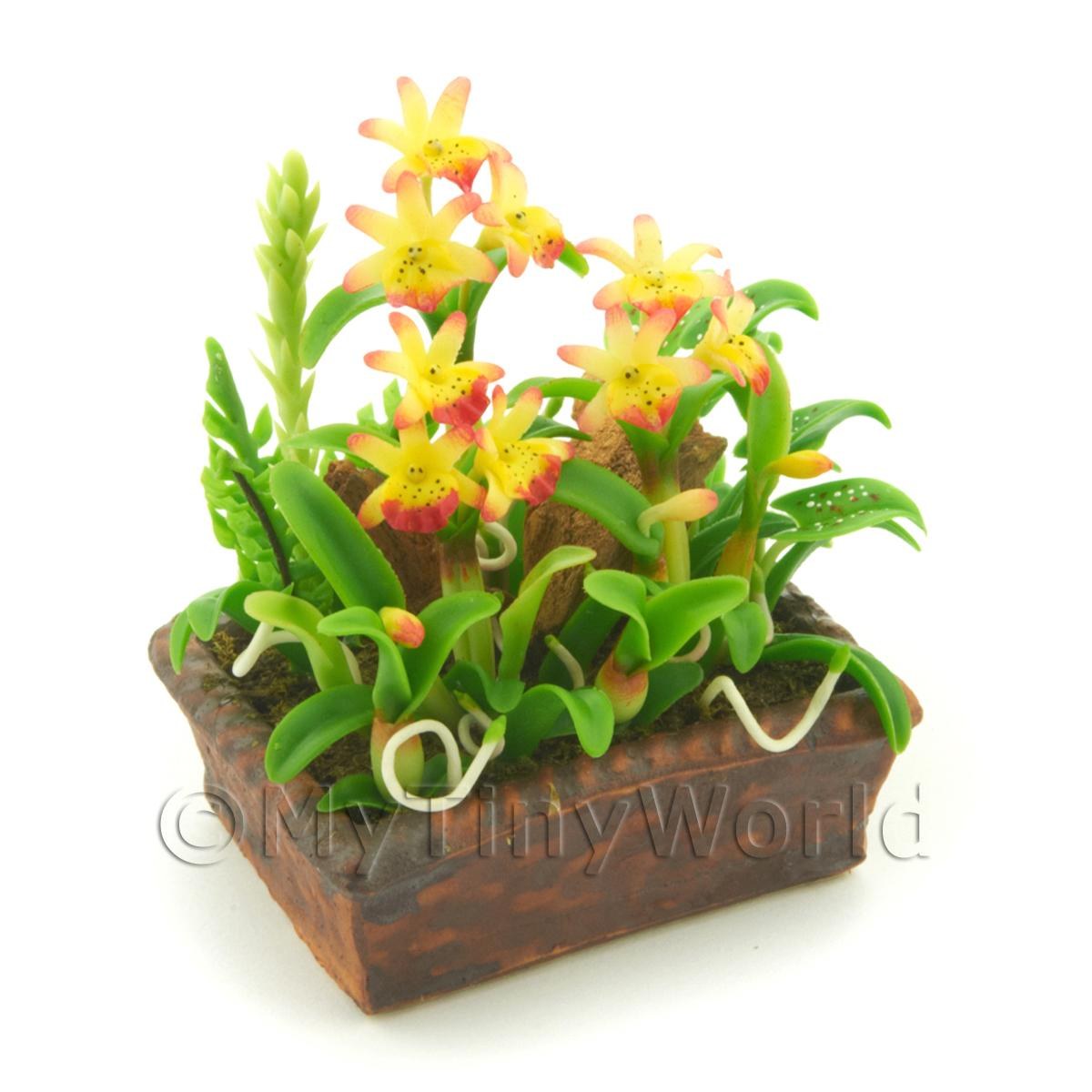 Dolls House Miniature Red / Yellow Cattleya Orchid Display