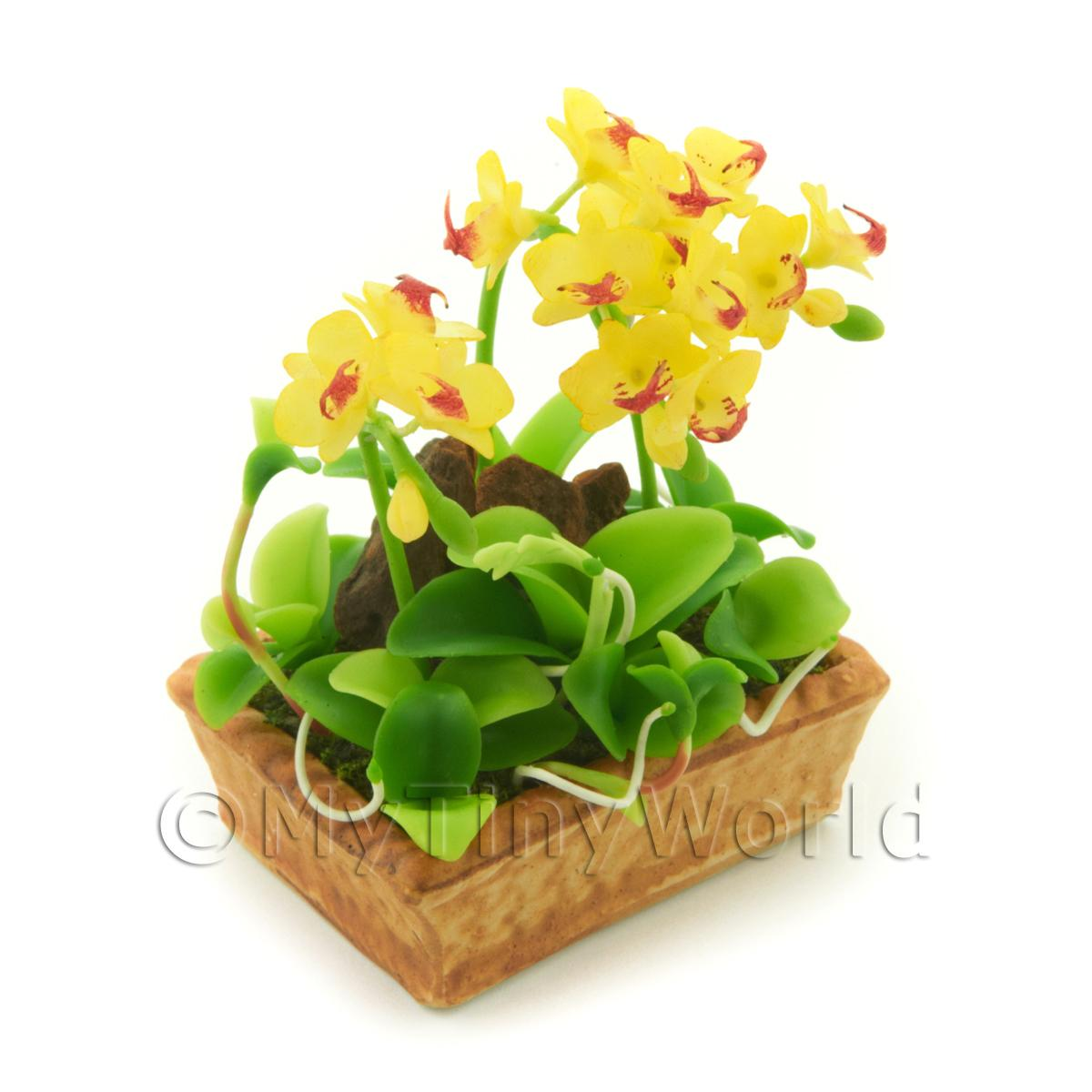 Dolls House Miniature Yellow / Red Dendrobium Orchid Display