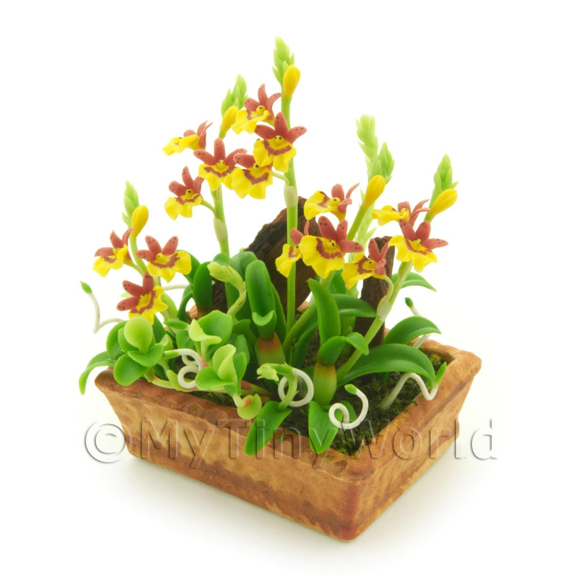 Dolls House Miniature Dusty Red / Yellow Demdrobium Orchids