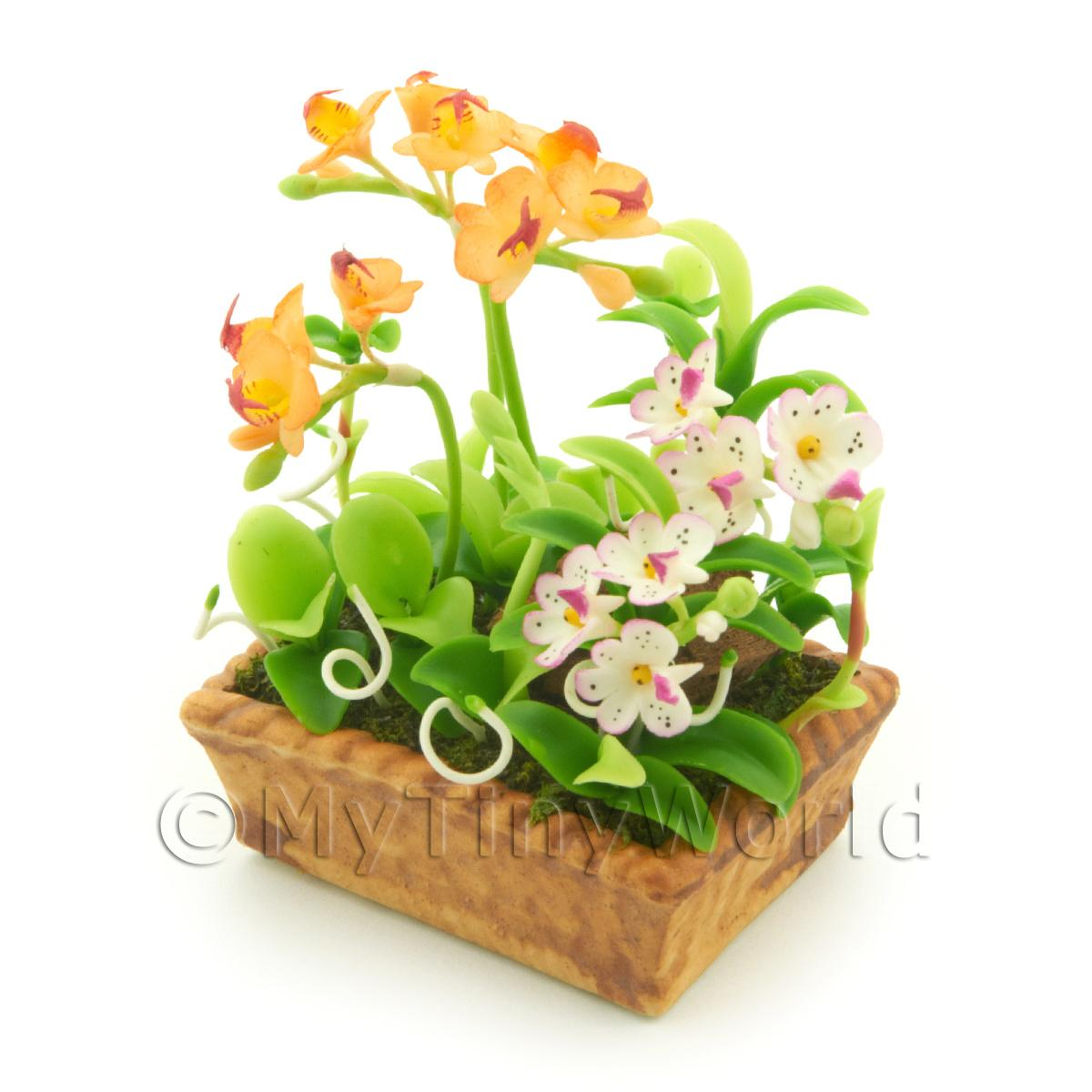 Dolls House Peach Cattleya and White Cattleya Orchids