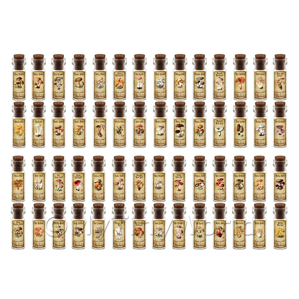 Dolls House Apothecary Set of 56 Fungi / Toadstall Bottles And Colour Labels