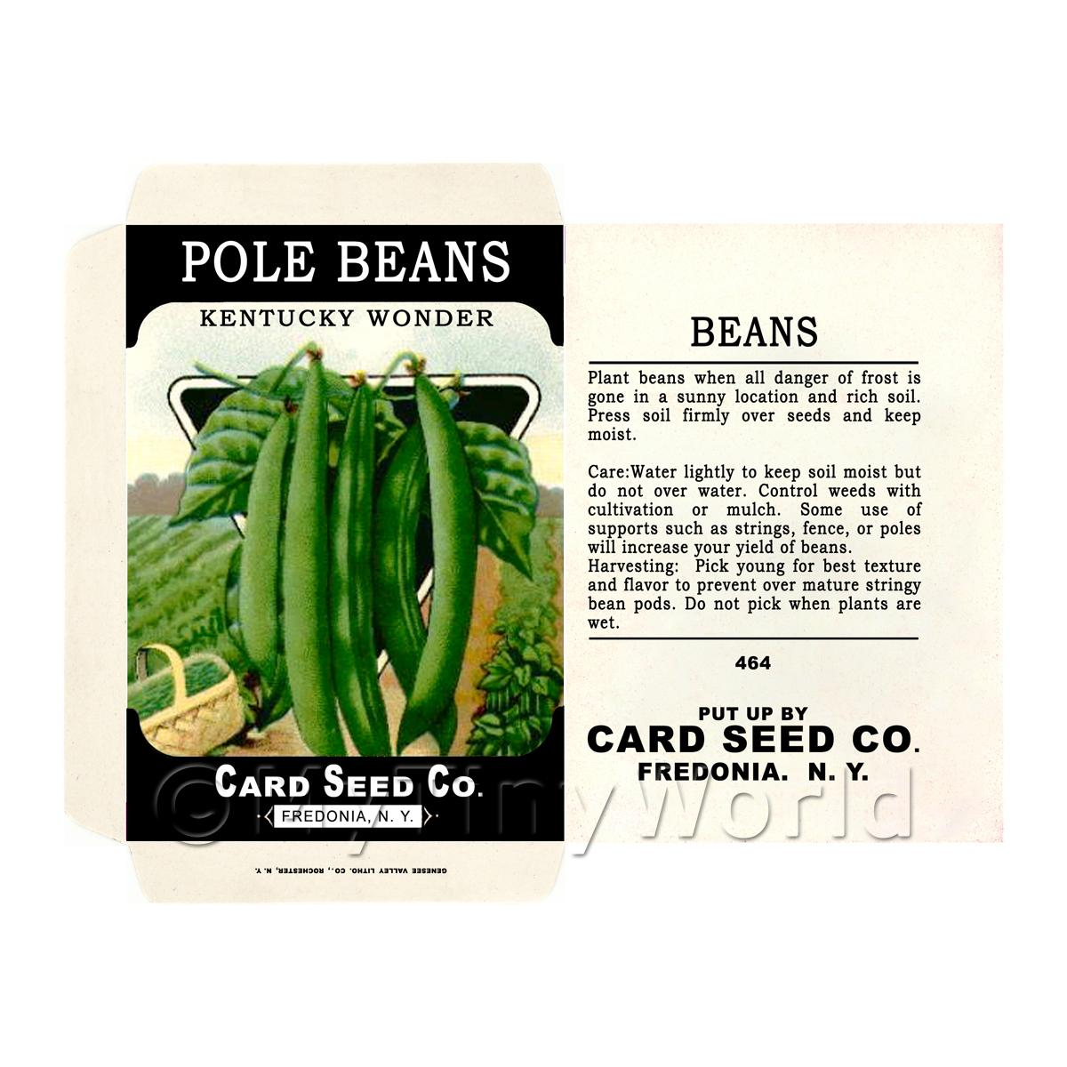 Dolls House Miniature Pole Beans Seed Packet (SP02)