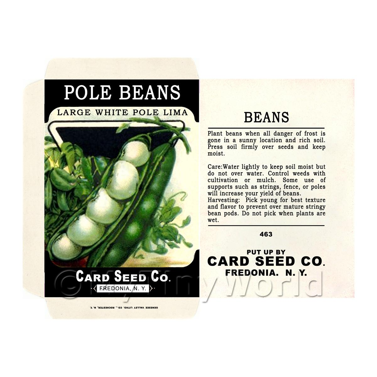 Dolls House Miniature Pole Beans Seed Packet (SP03)