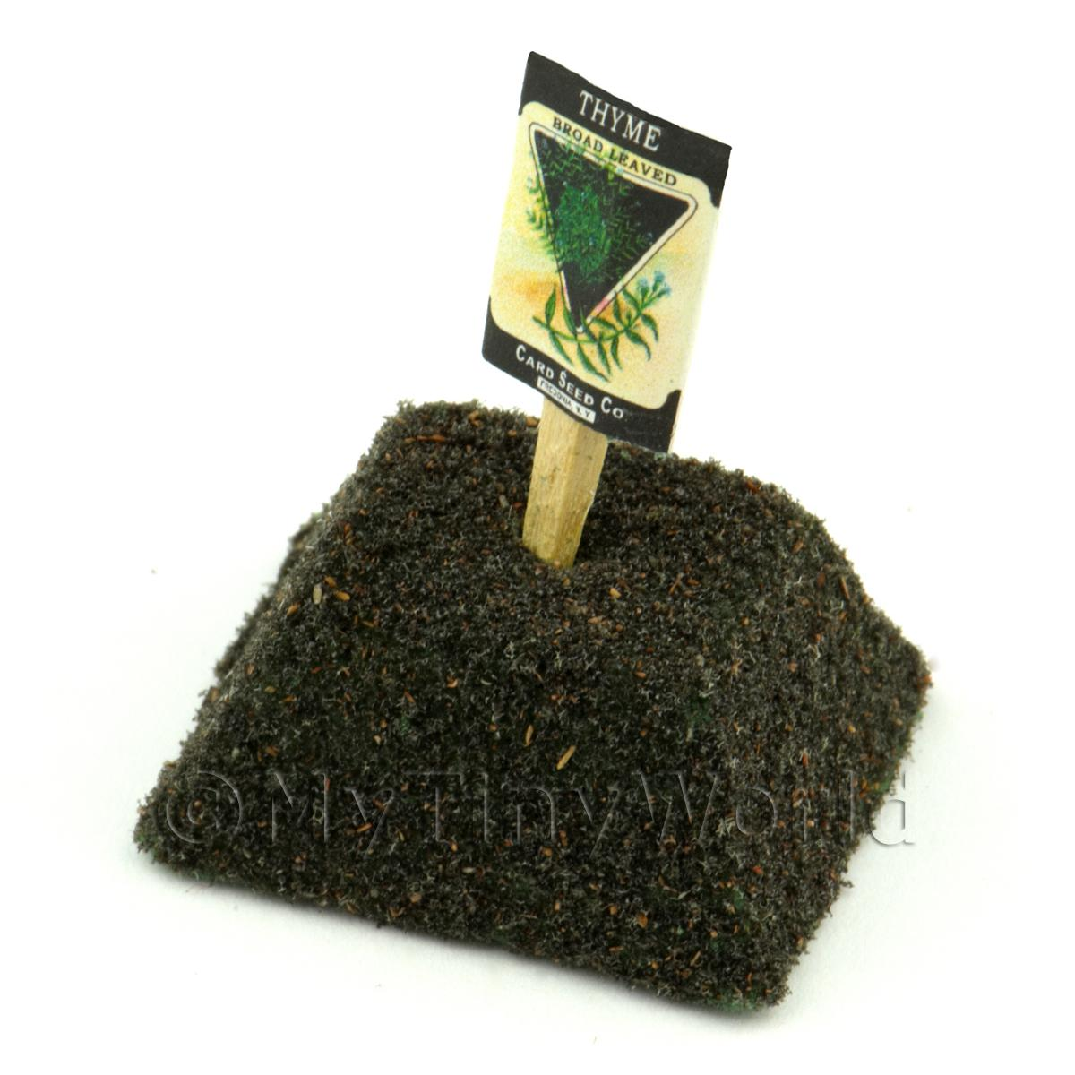 Dolls House Miniature Thyme Seed Packet With A Stick