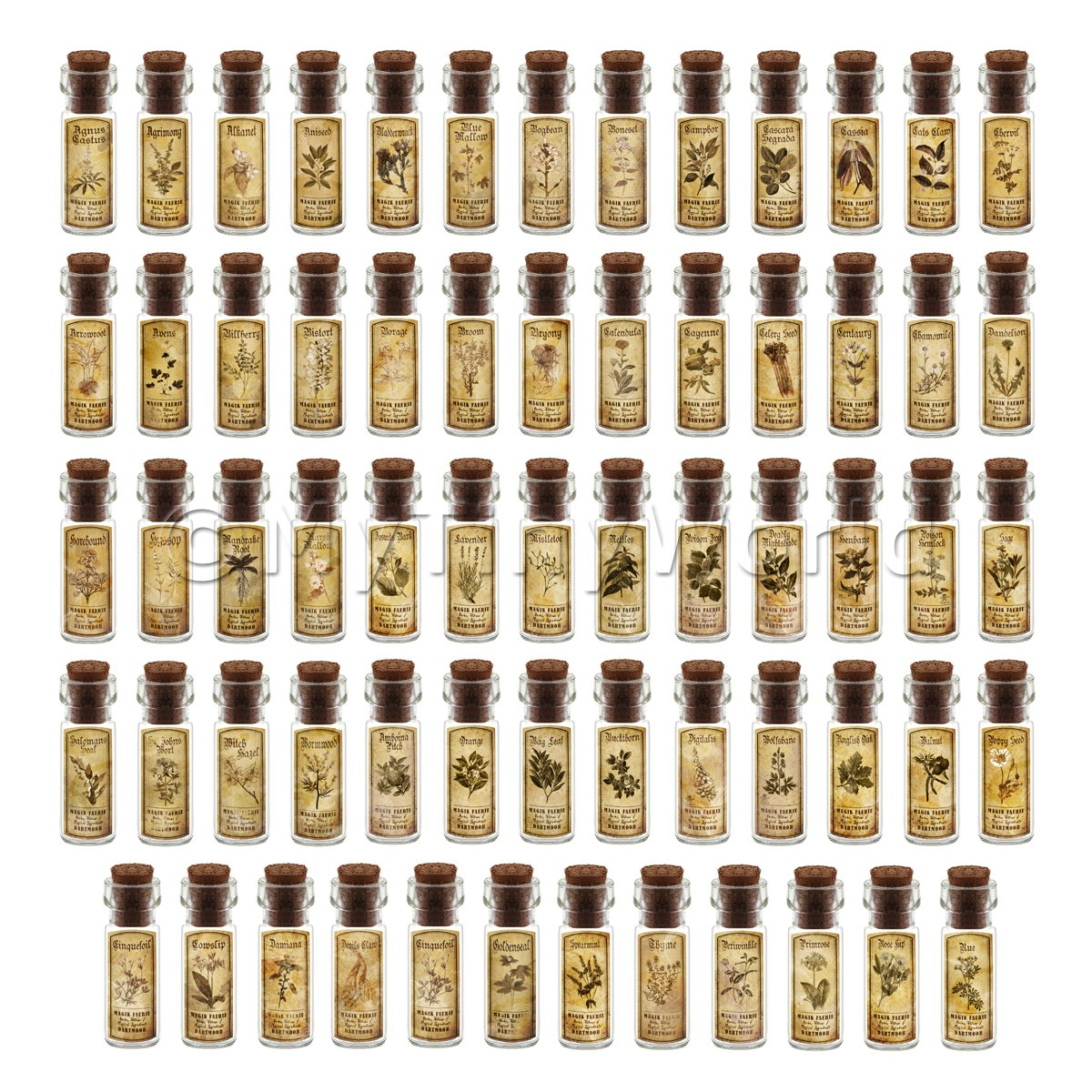 Dolls House Apothecary Set Of 64 Herb Short Sepia Label And Bottles